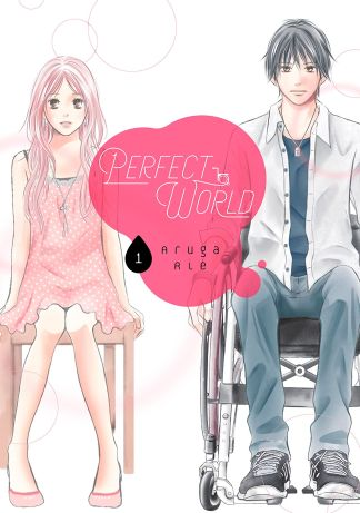 perfect_world_1_cover